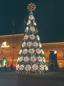 christmas tree memphis